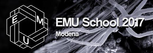 EMU School